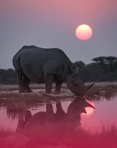 UNBEKANNTES AFRIKA – <br> NEUE BBC DOKU AB OKTOBER